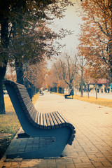 Wooden brawn bench on the city alley in falling season in calm cloudy weather