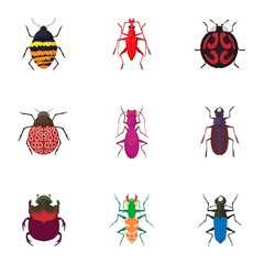 Order coleoptera icons set. Cartoon illustration of 9 order coleoptera vector icons for web