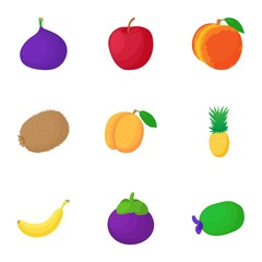 Organic fruit icons set. Cartoon illustration of 9 organic fruit vector icons for web