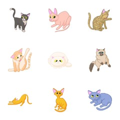 Cats icons set. Cartoon illustration of 9 cats vector icons for web