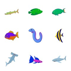 Tropical fish icons set. Cartoon illustration of 9 tropical fish vector icons for web