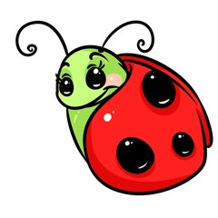 Insect ladybug cartoon illustration isolated image character