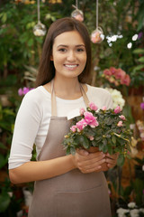 Pretty young florist holding pot with azalea in greenhouse