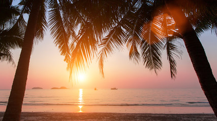 Foto op Aluminium Zee zonsondergang Wonderful sunset on the beach with coconut trees.