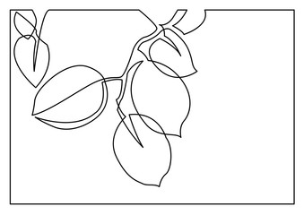 continuous line drawing of branch with leaves