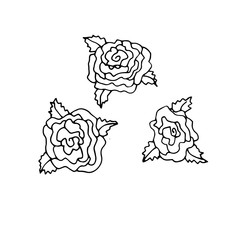 Hand drawn doodle outline magic line art element with floral ornament, rose. Sketch for poster, children or adult coloring pages.
