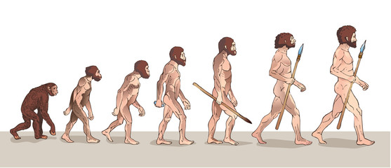 Human Evolution. Man Evolution. Historical Illustrations. Human Evolution Vector Illustration. Progress Growth Development. Monkey, Neanderthal, Homo Sapiens. Primate With Weapon.