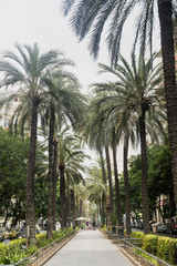 Valencia (Spain), Avenue at evening