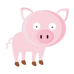 pig cartoon animal icon image vector illustration design