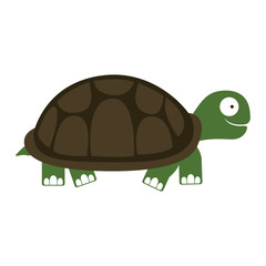 turtle cartoon animal icon image vector illustration design
