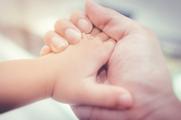 Father hand is holding little baby hand with loving and caring.