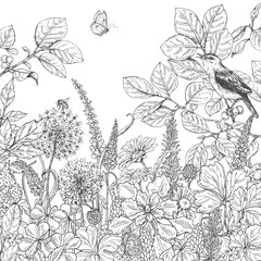 Hand drawn wildflowers, butterfly and bird.