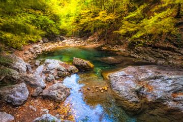 Autumn forest stream water