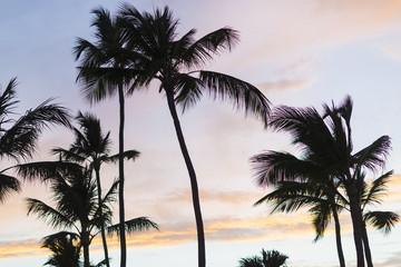 Beautiful Sunrise Over Tropical Beach