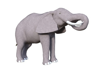 3D Rendering Elephant on White