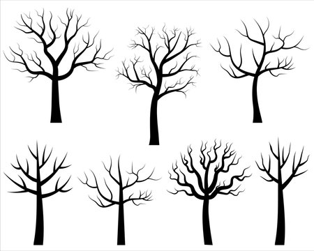 Vector bare tree silhouettes, Black cartoon trees without leaves