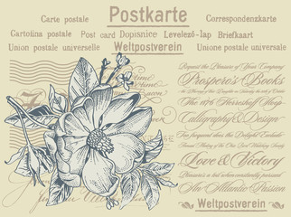 "Postcard from Germany with the text: ""Postcard. The universal postal Union"". Flora. Blooming rosehip realistic. Flowers nature isolated. Doodle. Engraving, drawing. Vintage stock vector illustration."