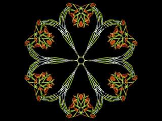 Digital abstract fractal flower green design on black background