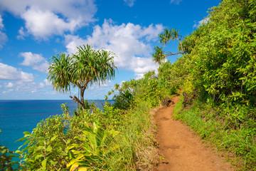Hawaii Kauai Napali coast Kalalau trail