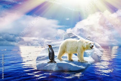 Bild Klimawandel