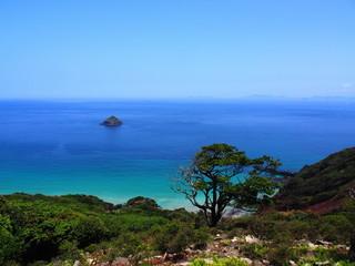 無人島の海岸(長崎県野崎島)