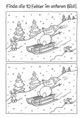 Fehlerbild Schlitten fahren