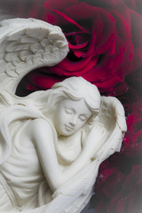 a white archangel angel with red rose in background