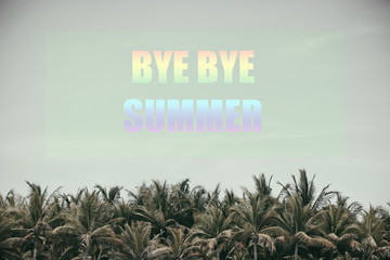 BYE BYE SUMMER. text of the coconut trees