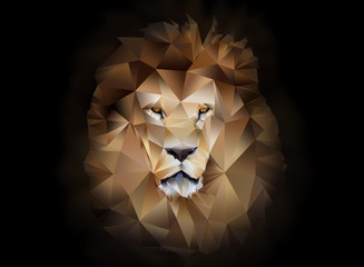 Lion polygon geometric