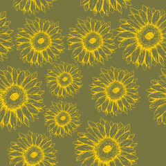 Seamless gerbera flowers pattern on the green background hand drawn ink