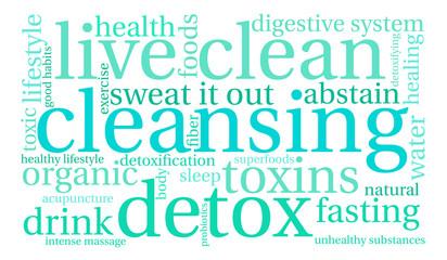 Cleansing Word Cloud