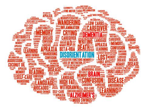 Disorientation Brain Word Cloud