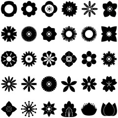 collection of flower icons, vector, flat icon on white background