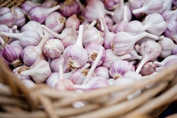 Red Russian garlic bulbs in a wicker basket.