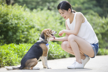 Young woman playing with a cute dog