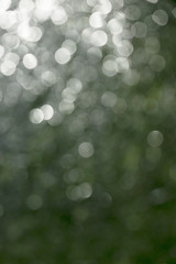 bokeh of drop water and lights on green background