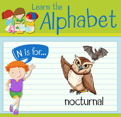 Flashcard letter N is for nocturnal