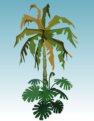Cartoon coconut tree palm and tropical plant