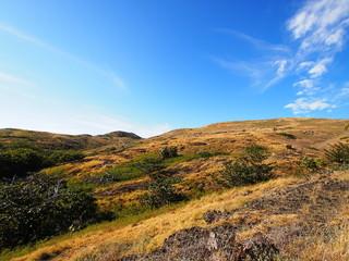 聟島(ケータ島) 丘陵地帯