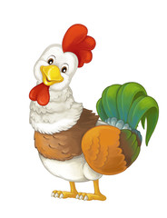 Cartoon happy farm animal - cheerful rooster is standing smiling and looking - artistic style - isolated - illustration for children