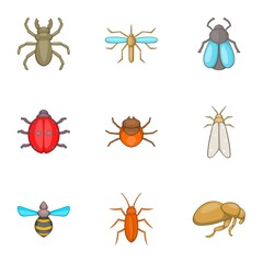 Order of insects icons set. Cartoon illustration of 9 order of insects vector icons for web