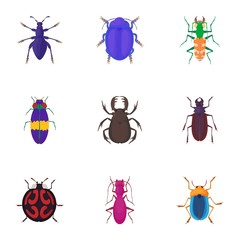 Insects beetles icons set. Cartoon illustration of 9 insects beetles vector icons for web