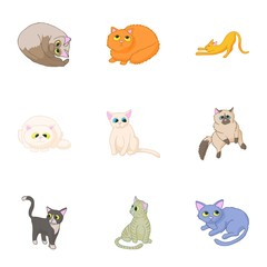Pet icons set. Cartoon illustration of 9 pet vector icons for web