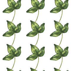 handwork watercolor seamless pattern with clover flower isolated on a white background