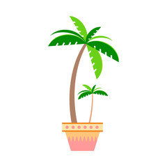 Palm tree in a pot in the style flat on a white background.