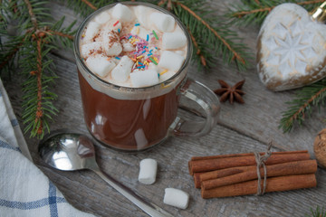 Christmas cocoa with marshmallow, chocolate, walnuts, cinnamon.