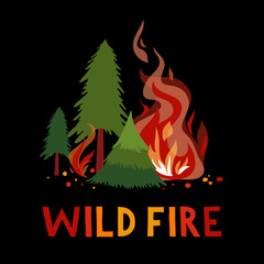 Wild fire in a forest.