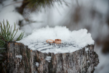 Wedding rings in snowy winter forest. Soft selective focus