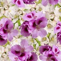 flowers.seamless pattern(Pelargonium and apple flowers)