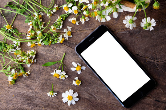black smart phone and white flowers on an old wooden board back